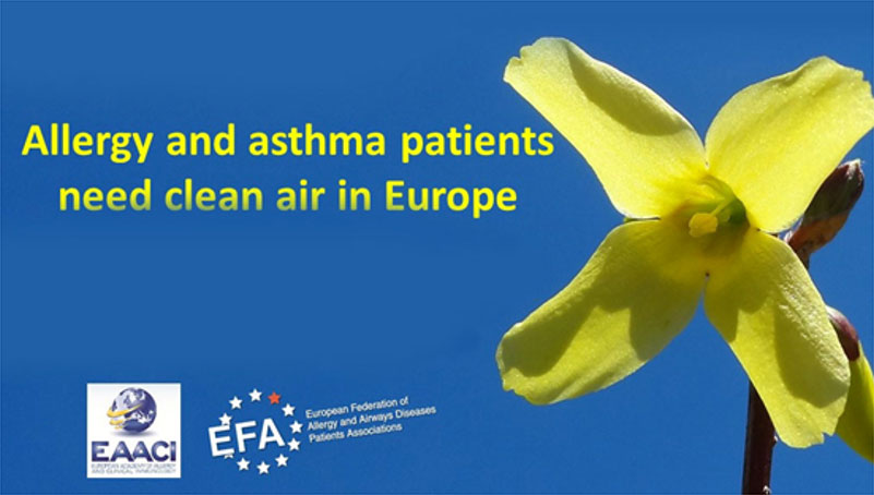 Policy Meeting - Allergy and Asthma Patients need Clean Air in Europe – 1 July 2015 icon